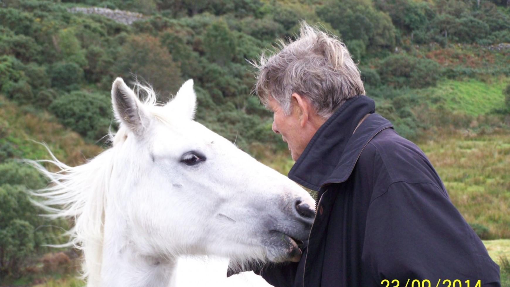 Relational Horsemanship