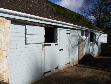 Our Stables - Equine Therapy Center